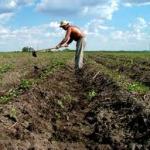 Romania a pierdut peste jumatate din populatia ocupata din agricultura