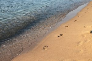 750 milioane de euro alocați pentru realizarea a 25 de kilometri de plaje noi ce vor fi realizate in următorii trei ani
