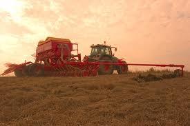 Guvernul a stabilit cuantumul sprijinului financiar pentru agricultorii din sectorul vegetal