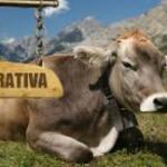 "Daniel Constantin: ""Vrem sa-i convingem pe agricultori sa constituie cooperative"""