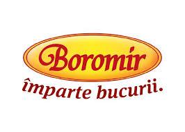 Boromir a obținut în 2017 un profit net dublu față de anul precedent