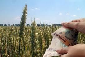 Petre Daea, la Timișoara: Subvențiile pentru fermieri, distribuite din 16 octombrie