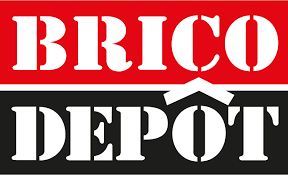 """Tranzacţie pe piaţa de bricolaj: Kingfisher, proprietarul Brico Depôt, """"înghite"""" Praktiker România. Contractul de achiziţie a 100% din acţiuni, semnat"""