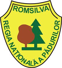 Romsilva: mii de hectare de pădure sunt afectate de fenomenele meteo extreme