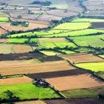 Eurostat: În România, terenul arabil costă mai puțin de 1 leu metrul pătrat, minimul pieței din UE