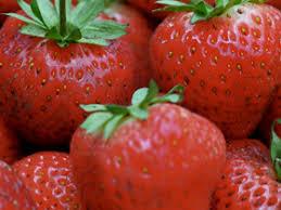 Fermierii britanici avertizează că pierderea muncitorilor din UE va crește prețurile căpșunelor
