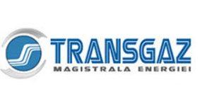 Transgaz a dat startul lucrărilor la stațiile de comprimare din cadrul proiectului BRUA