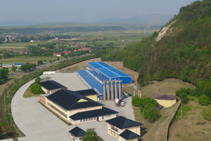 Croco Onești, producător de sticksuri, a avut profit de 8,4 mil. euro la afaceri de 30 mil. euro în 2016
