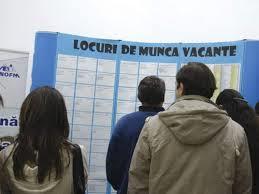 Rata şomajului, estimată la 7% pentru iulie 2014