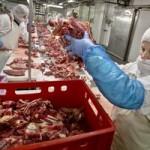 ANSVSA a aplicat amenzi de 91.920 de lei şi a confiscat 14.075 de kilograme de carne în semestrul I