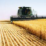 Comisia schimbă regulile în agricultură: Plățile directe vor fi plafonate la 100.000 euro pe fermă