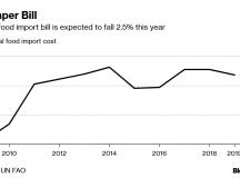 Costul importului de alimente la nivel global este așteptat să scadă pentru prima oară în 4 ani