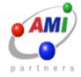 AMI_Partners