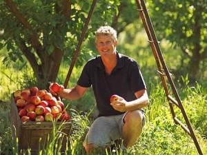 Idei de afaceri: Top 5 investitii profitabile in agricultura in Romania