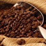 Hedone Cafe sau visul de 1 milion de euro a trei craioveni: să producă cea mai bună cafea din România