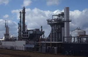 Industria tutunului și cea a prelucrării lemnului, luate în vizor de primul ministru