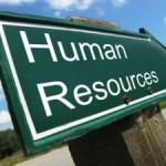 Afacerile celor mai mari cinci jucători de pe piaţa serviciilor de HR au crescut între 10 și 40%