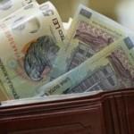 Senat: Firmele ar putea primi valoarea salariului minim brut pentru fiecare tânăr fără experienţă angajat