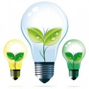 rp_certificate_verzi_energie_verde_bizzpedia-300x300.jpg