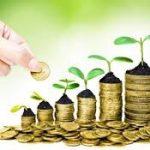 Un paradox care să ne pună pe gânduri: creştere economică rapidă fără întreprinderi care cresc rapid