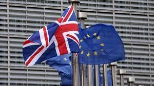 Marea Britanie ar putea adera din nou la UE după Brexit, admite un lider eurosceptic