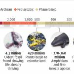 Cele mai vechi fosile găsite vreodată pe Pământ arată că organismele au prosperat cu 4,2 miliarde de ani în urmă, la scurt timp dupa formarea Terrei, vs. 3,4 miliarde ani dovedit anterior