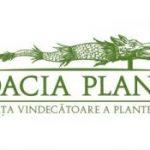 Dacia Plant, afaceri de peste 29 de milioane de lei, în 2016