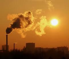 Raport ONU asupra climei (IPCC): oamenii au deteriorat aproximativ un sfert din suprafața neacoperită cu gheață a Terrei