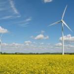 Guvernul va subvenţiona în 2015 mai multă energie verde