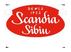 Scandia Sibiu a crescut afacerile la 59 mil. euro în 2017 (+13%) și a făcut o achiziție în Spania
