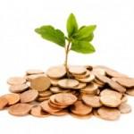 Circa 500 de firme vor fi susţinute de business angels cu 5-10 mil. euro în următorul an