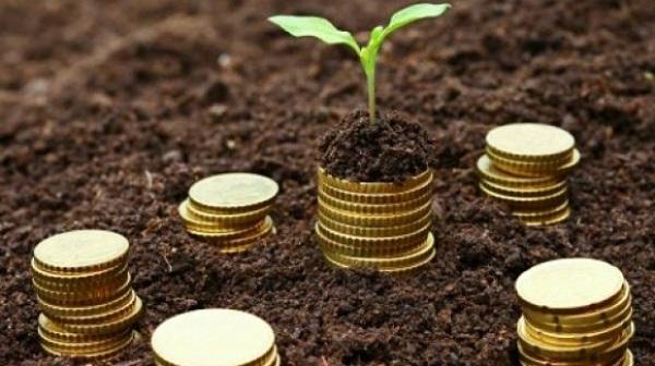 Gospodăriile din România şi-au majorat veniturile cu 30% în al treilea trimestru al anului trecut, la 4.454 lei/lună, dar cheltuielile au crescut cu 35%