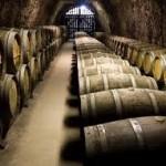 Peste 30 de crame active din România practică turismul viticol